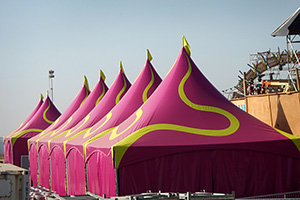 tomorrowland green mamba tent