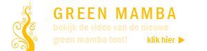 green mamba video